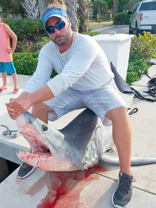 shark fishing 02